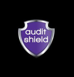 Audit Insurance