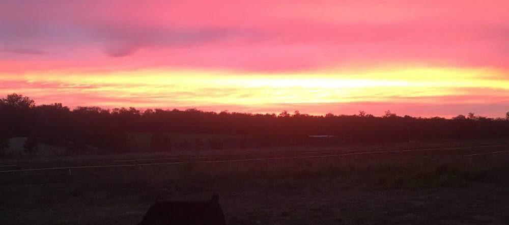 Sun up Farm