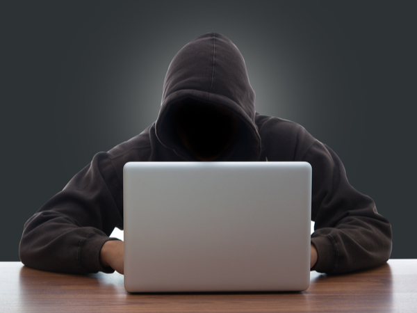 The many faces of cybercrime